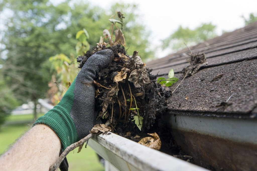How to Maintain Your Home's Roof 1