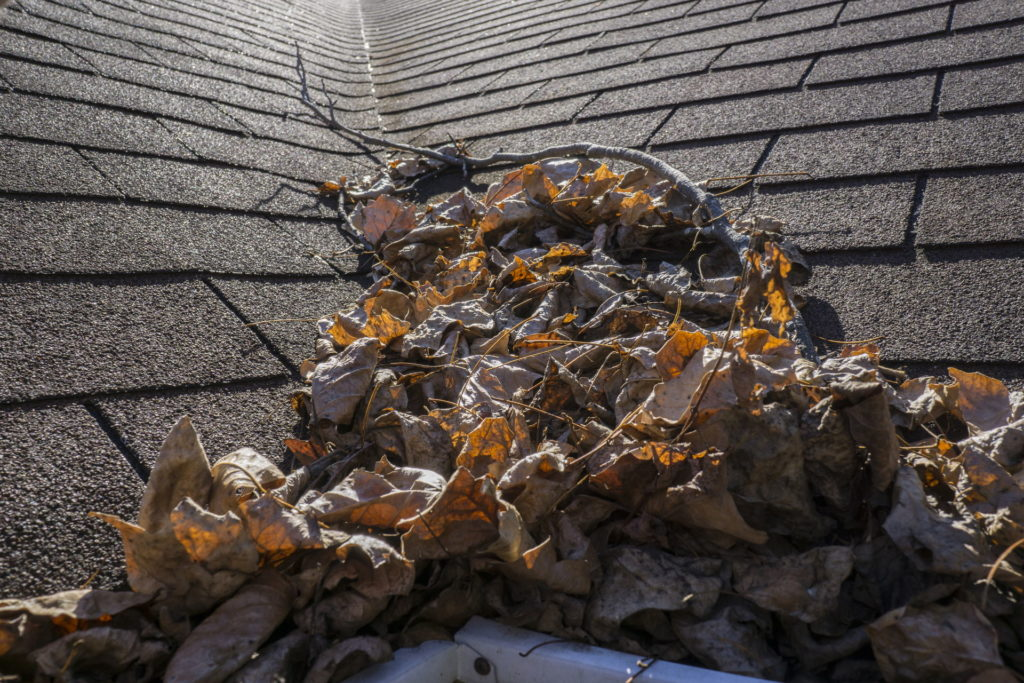 How to Maintain Your Home's Roof 3